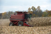 Combining corn field — Stock Photo