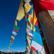 Mani stones and prayer flags — Stock Photo