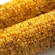 Stock Photo: Broiled Sweet Corn