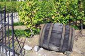 Fass Wein — Stockfoto