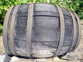 Cask wine — Stock Photo