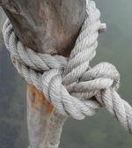 Il nodo della corda — Foto Stock