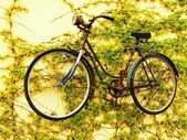 Suspended bicykle — Stock Photo