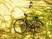 Suspended bicycle — Stock Photo
