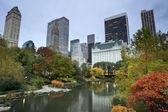 セントラル ・ パーク、マンハッタンのスカイライン. — ストック写真
