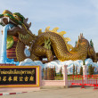 The Dragon nation park — Stock Photo