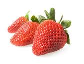 Red strawberries — Stock Photo