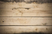 Timbers of wood, texture. — Stock Photo