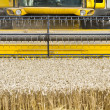 Close up of a combine harvester at work — Stock Photo #12556359