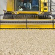 Stock Photo: Close up of a combine harvester at work