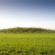 Stock Photo: Neolithic burial mound, Cranborne Chase, England