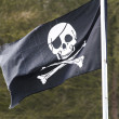 Skull and cross bones flag — Stock Photo #43508067
