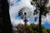 Antiguo molino de viento con árbol — Foto de Stock