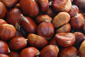 BACKGROUND chestnuts — Stock Photo