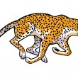 Running cheetah on white — Stock Vector