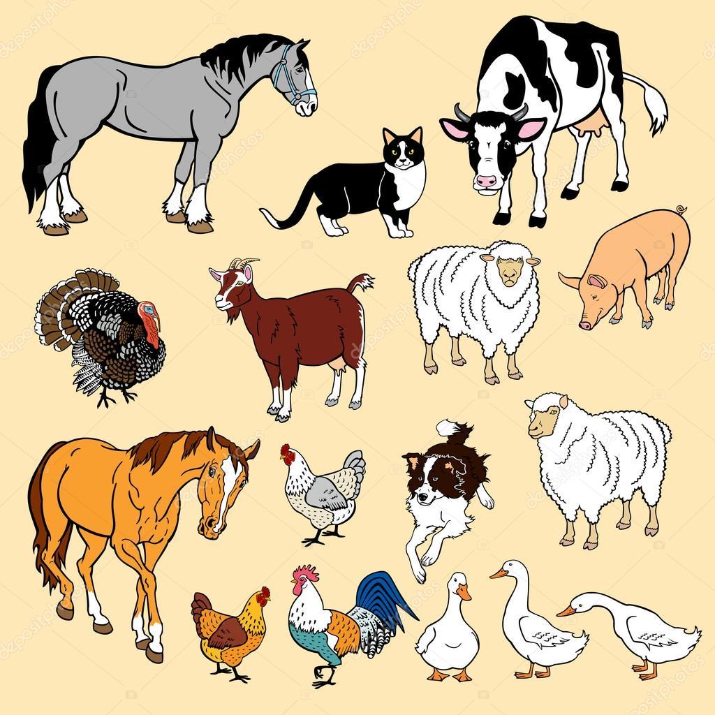 Фото домашних животных для детей распечатать цветные