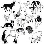 Постер, плакат: Set with domestic animals black and white images
