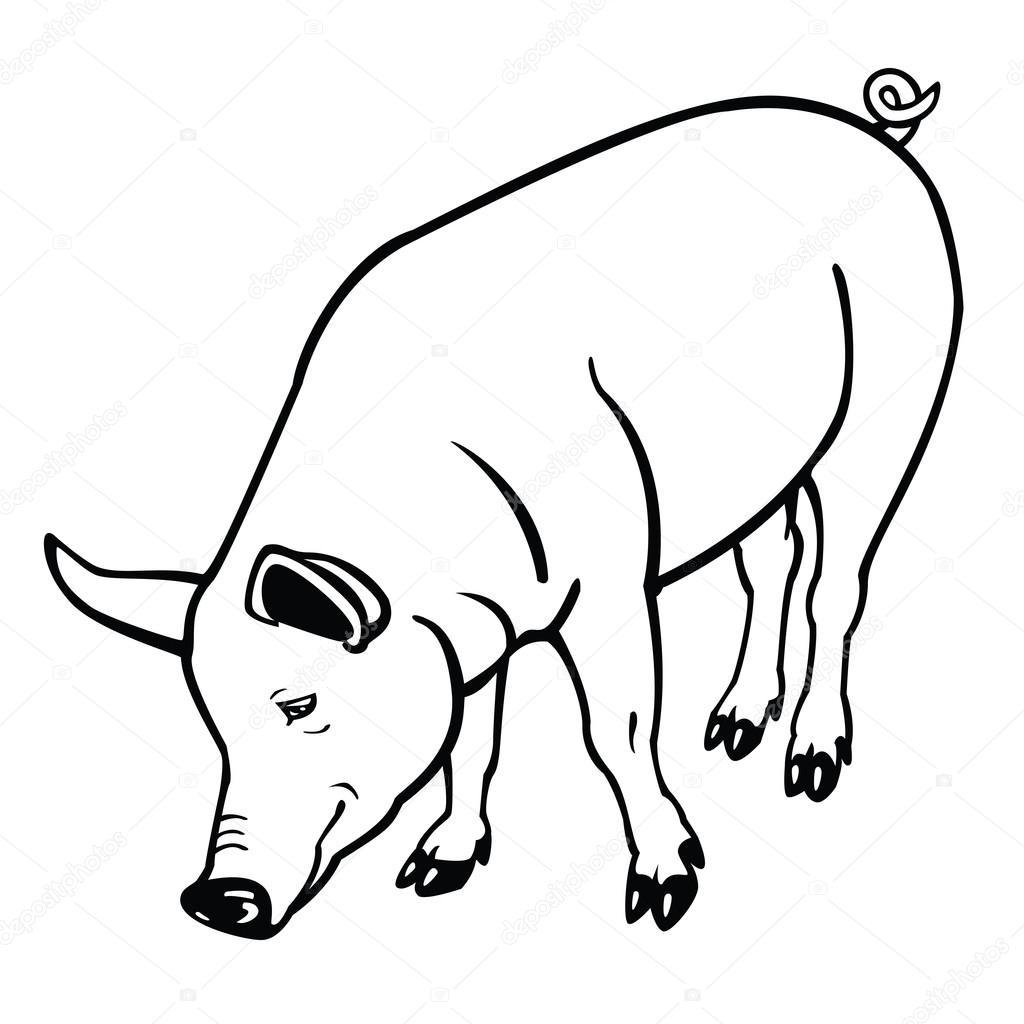 Pig Clip Art Black and...
