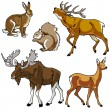 Stock Vector: Set of forest animals