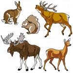 Satz von Waldtiere — Stockvektor