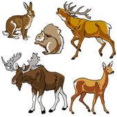 森の動物セット — ストックベクタ