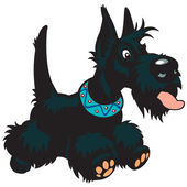 Cartoon scottish dog — Stock Vector