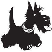 Cartton scottish terrier black white — Stock Vector
