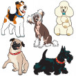Stock Vector: Set with dogs