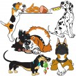 Set of cartoon dogs - Stock Vector