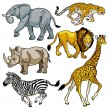 Set with african animals of savanna — Stock Vector #19577565