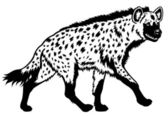 Spotted hyena black white — Stock Vector