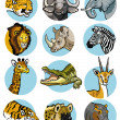 Stock Vector: Icons set with africanimals