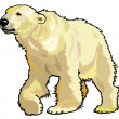 Polar bear — Image vectorielle