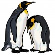 Emperor penguins — Vettoriali Stock