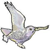 белая сова — Cтоковый вектор