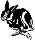 Courir le lièvre blanc noir — Vecteur