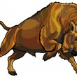 Wisent - Stock Vector