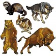 Set with animals of europe — 图库矢量图片
