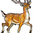 Fallow deer — Stock Vector