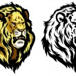 Head of lion — Stock Vector