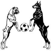 Doberman And Boxer black white — Stock Vector