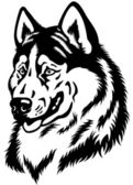 Siberian husky head black white — Vettoriale Stock