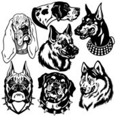 Black white set with dogs heads — Stock Vector