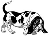 Basset Hound Black White — Vector de stock
