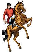 Cavalier de cheval — Vecteur