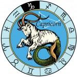Capricorn zodiac sign — Stock Vector #45325841