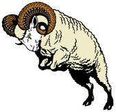 Ram sheep — Vetor de Stock