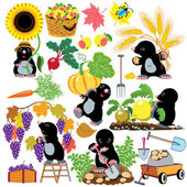 Set with mole working in the garden — Stock Vector