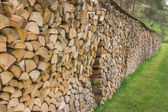 Firewood stacked in a row — Stock Photo