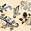Vintage branches and flowers design vector elements. — Stock Vector